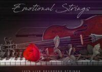 Emotional Strings Sample Pack WAV