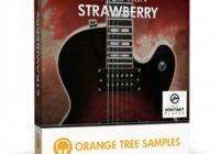 Orange Tree Samples Evolution Strawberry v1.1.68 KONTAKT