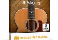 Orange Tree Evolution Jumbo 12 KONTAKT
