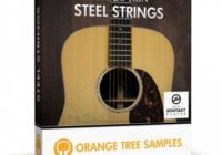 Orange Tree Samples Evolution Steel Strings v1.1.68 KONTAKT