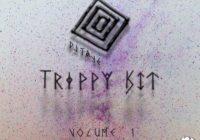 Splice Sounds DJ Taye Trippy Kit Vol. 1 Sample Pack WAV