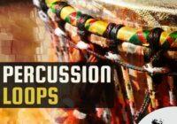 Chop Shop Samples Percussion Loops WAV