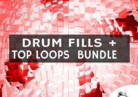 Chop Shop Samples Drum Fills & Top Loops Bundle WAV