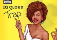 IQ Samples IQ Cloud Trap WAV