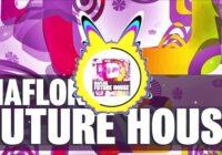 Maflok Future House Sample Pack & Presets