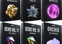 Cymatics Black Friday Ultimate Bundle Vol.2