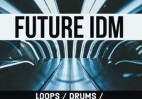 Future IDM