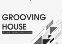 Bingoshakerz Grooving House MULTIFORMAT