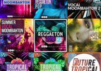 AUDENTITY - Tropical Reggaeton & Moombahton Bundle