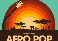 Afro Pop Volume 1