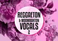 Equinox Sounds Reggaeton and Moombahton Vocals Vol.2 WAV MIDI