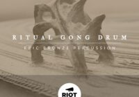 Ritual Gong Drum