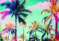 SM86 Miami Sessions MULTIFORMAT