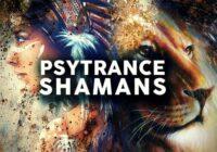 Psytrance Shamens Sample Pack WAV MIDI