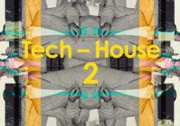 SM30 Tech-House 2 MULTIFORMAT