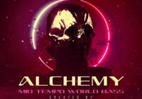 Alchemy Mid Tempo World Bass