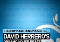 SMP07 Stereo Productions David Herrero Organic House Beats WAV