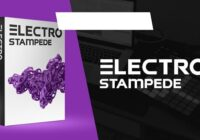 Electro Stampede // STMPD Style EDM Drums, Melodies & Kits
