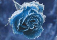 Splice Originals Frost - February RnB WAV