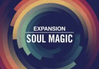 NI Soul Magic Expansion [WIN & MACOSX]