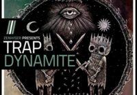Trap Dynamite - 4GB Of Trap Samples, Loops, Stems & Midi