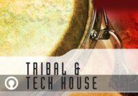 Tribal & Tech House Sample Pack (WAV)
