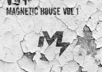 Sample Market VOY Magnetic House Vol.1 WAV
