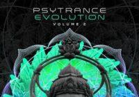 Psytrance Evolution Volume 2 Sample Pack (WAV)