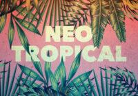Splice Originals Neo Tropical WAV FXP