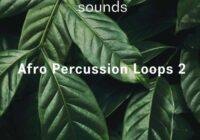Riemann Kollektion ASHRAM Afro Percussion Loops 2 WAV