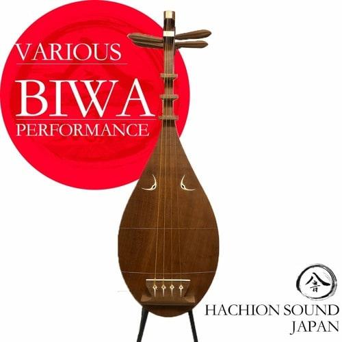 Hachion Sound BIWA WAV