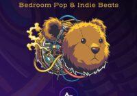 ADSR Sounds Tinker – Bedroom Pop & Indie Beats WAV FXP