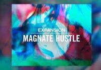 NI Expansion: Magnate Hustle v2.0.1 WIN & MAC