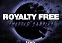 Big Citi Loops Royalty Free Chopped Samples WAV