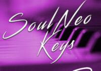 Diversitility Soul Neo Keys WAV