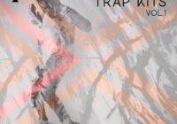 Essential Audio Media Neo Soul Trap Kits Vol.1 WAV MIDI