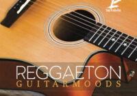 Luigi Production Reggaeton Guitar Moods 1 WAV