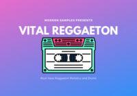 Modern Samples Vital Reggaeton WAV