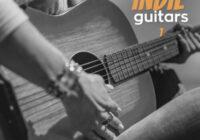 Vanilla Groove Studios Emotive Indie Guitars Vol.1 WAV