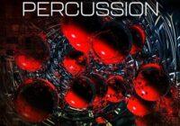 New Loops FX Percussion WAV