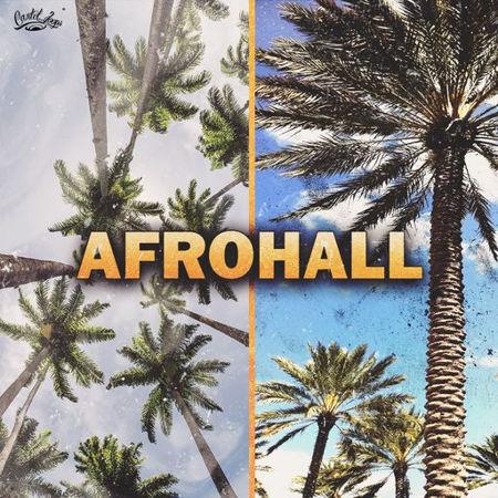 Cartel Loops Afrohall WAV MIDI
