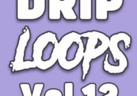 DiyMusicBiz Drip Loops Vol.12 WAV