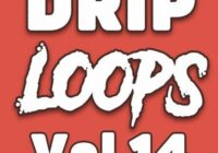 DiyMusicBiz Drip Loops Vol.14 WAV