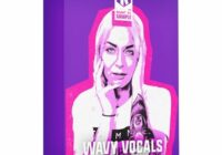 Keep It Sample Wavy Vocals WAV